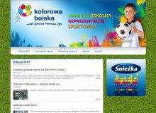 """Strona internetowa projektu """"Kolorowe Boiska …czyli Szkolna Pierwsza Liga"""""""