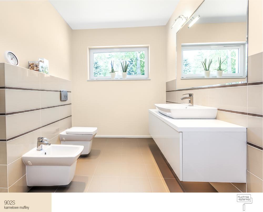 Jak dobrać kolory ścian w małej łazience?  Farby Śnieżka