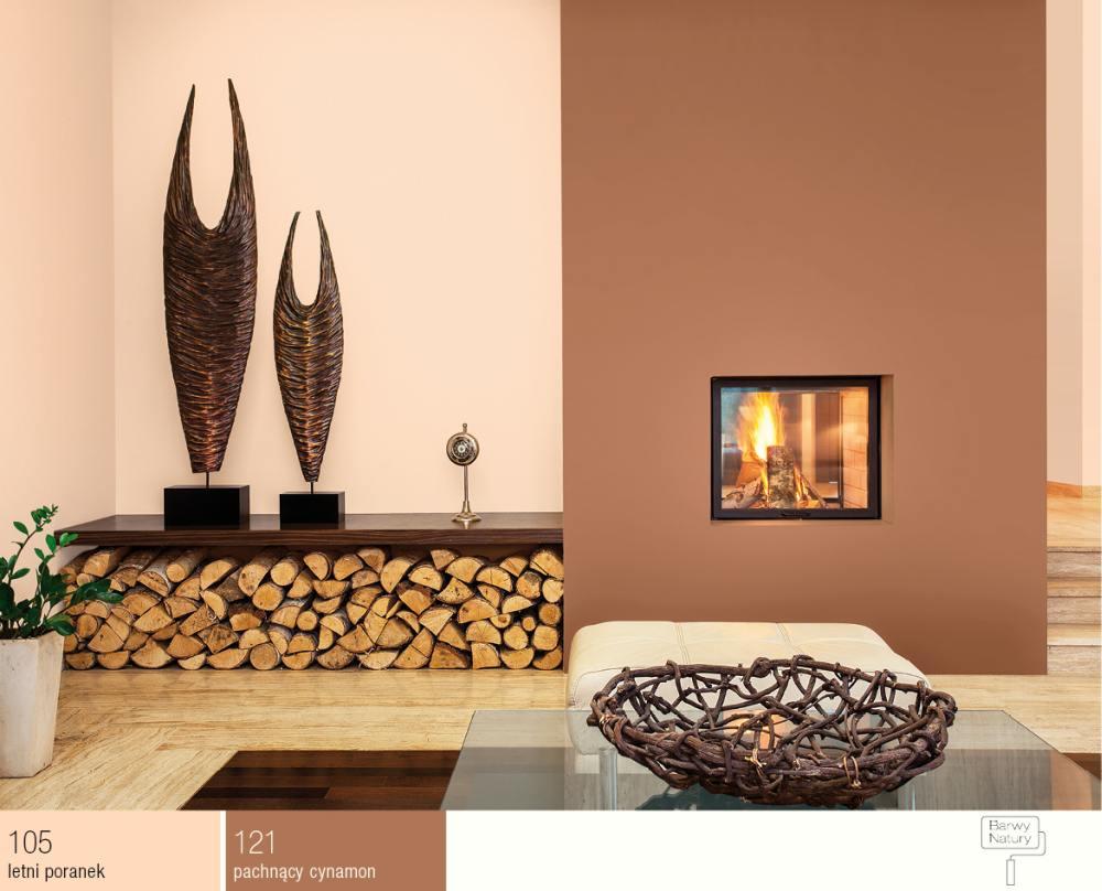 Ciep e kolory cian w pomieszczeniach 5 najlepszych for Kolory scian w salonie