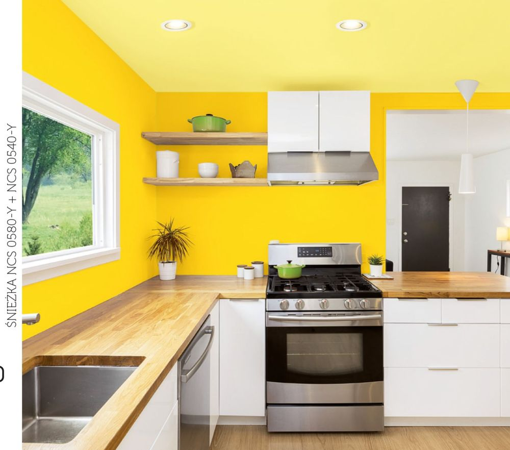 Parę słów o farbach do zadań specjalnych  Farby Śnieżka -> Kuchnia Tapeta Czy Farba