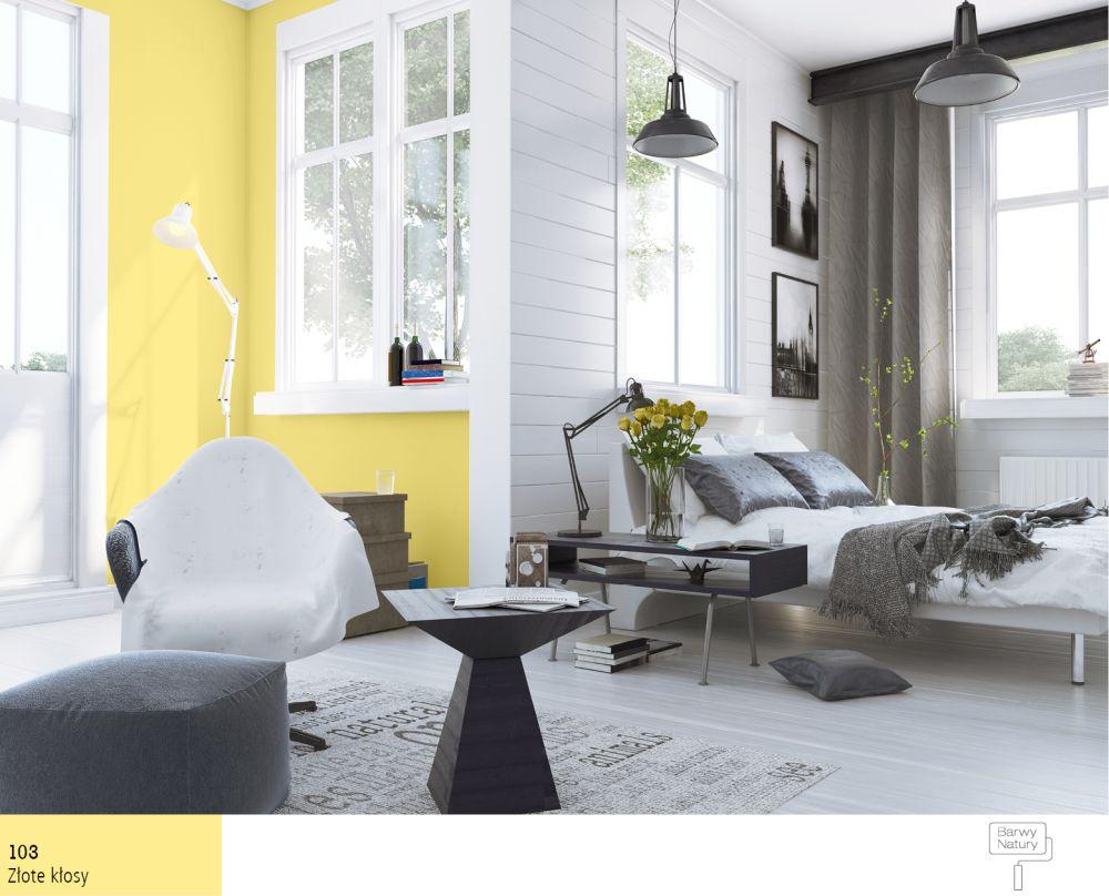Cytrynowe Wnętrza Zatrzymaj Lato W Swoim Domu Farby śnieżka