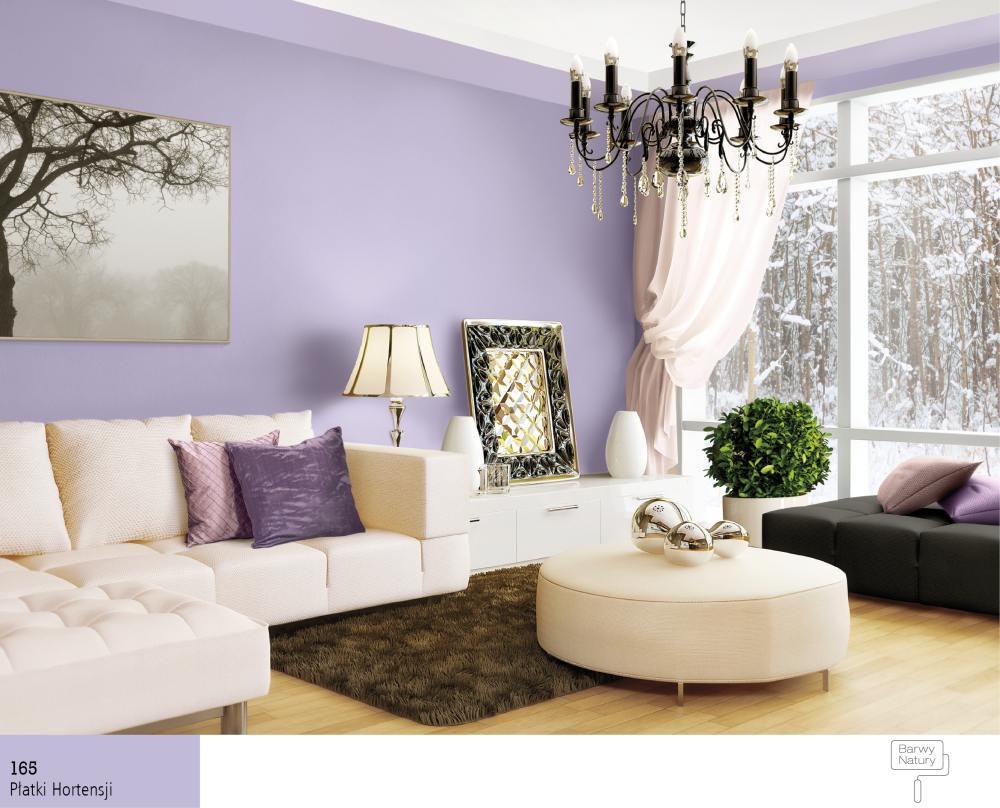 Dobór kolorów farb do białych mebli  Farby Śnieżka -> Kolor Kuchni Do Bialych Mebli