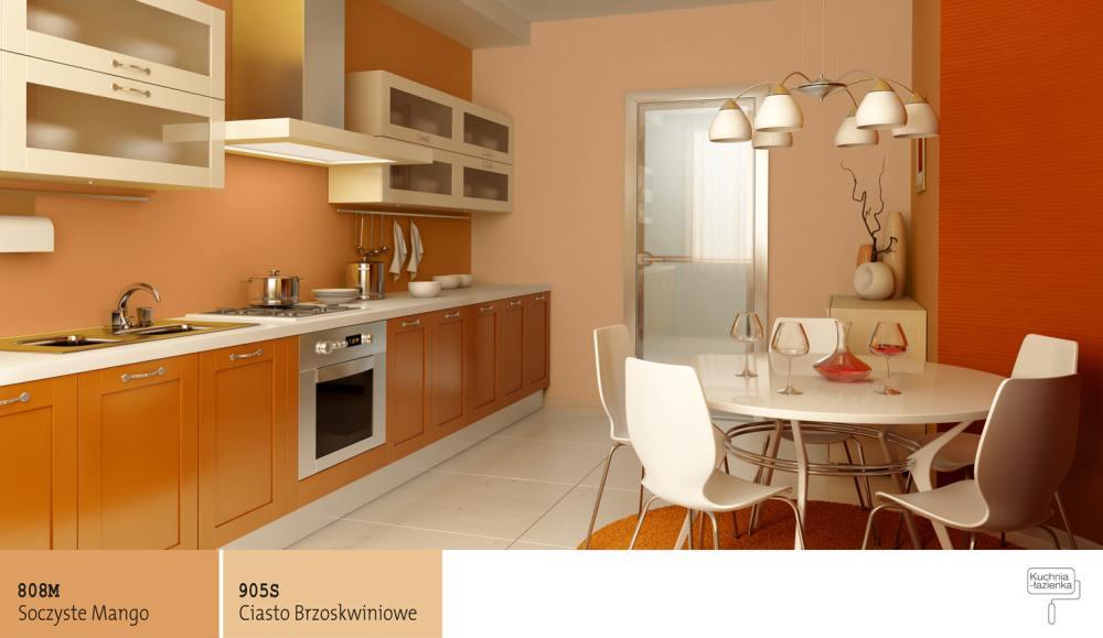 Jaki Kolor Farby Wybrać Do Kuchni Farby śnieżka