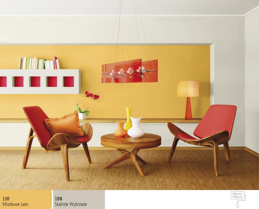 Jak rozsądnie dobierać kolory farb do ścian?  Farby Śnieżka