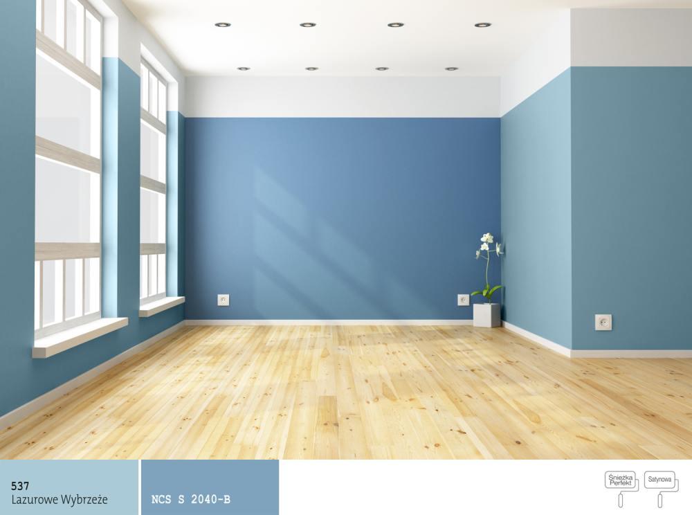 Jaki kolor farby dobra do koloru niebieskiego malowanie What to do with an empty room in your house