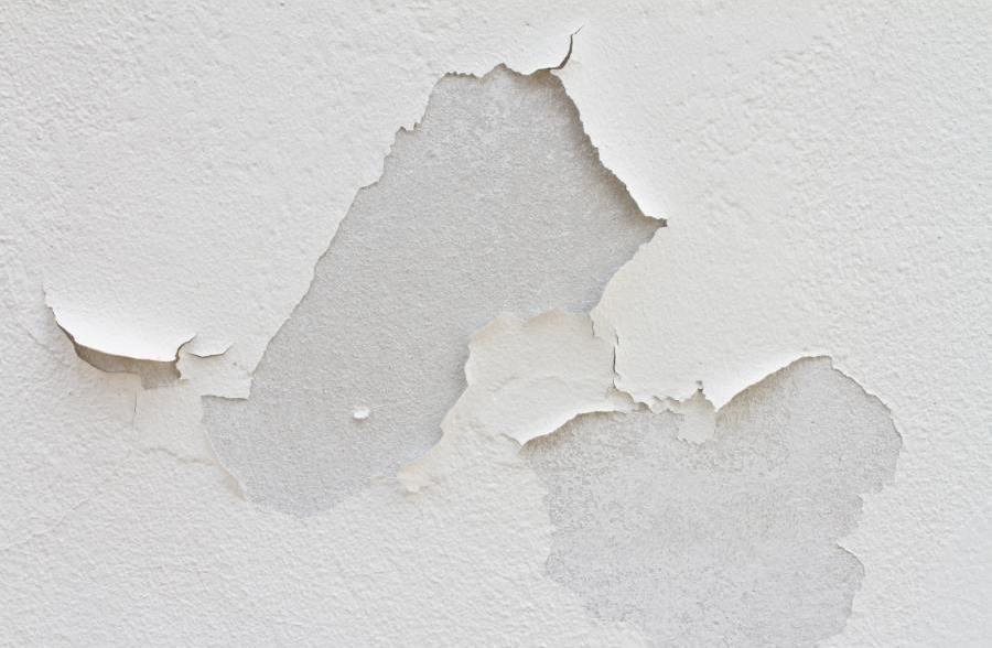 Malowanie ścian 4 Błędy Których Warto Uniknąć Farby śnieżka