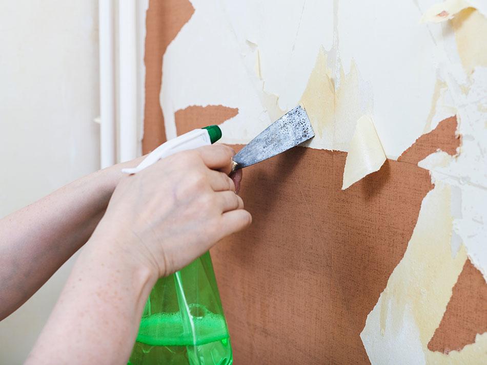 Malowanie ścian Po Usunięciu Tapety Poradnik Krok Po Kroku Farby śnieżka