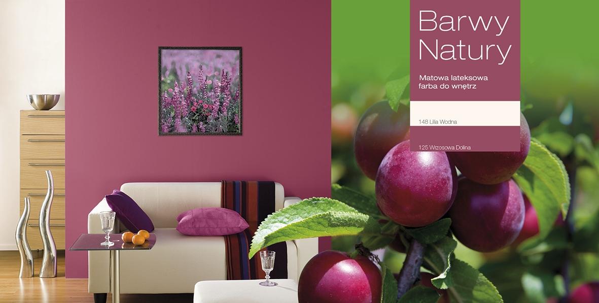 kolory farb inspirowanę naturą -jesienne wrzosowisko